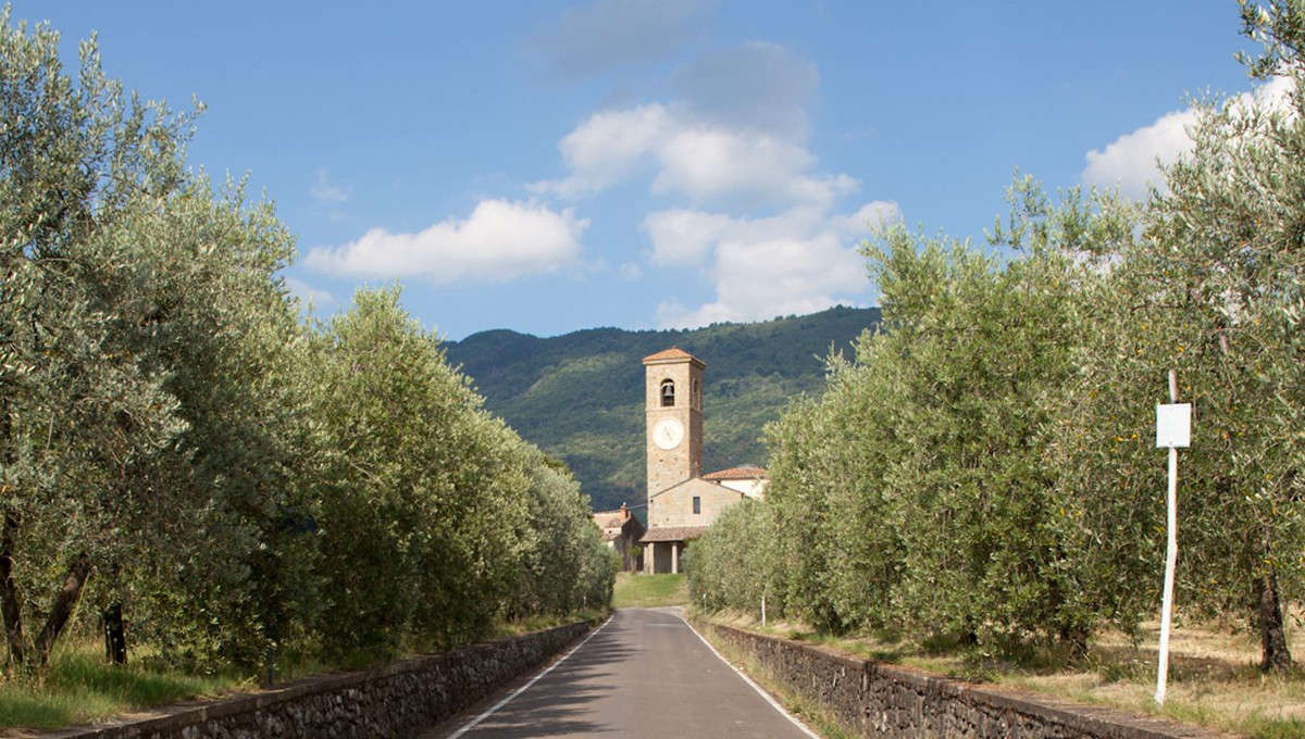 reggello-valdarno-bike-road
